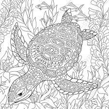 Small Picture Adult Coloring Pages Turtle Zentangle Doodle Coloring Pages
