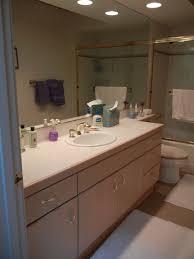 Reface Bathroom Cabinets Vanities