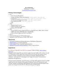 Resume Java Programmer Resume
