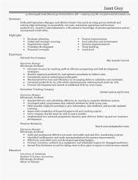 Dispatcher Resume Professional Template Nett Operations Manager