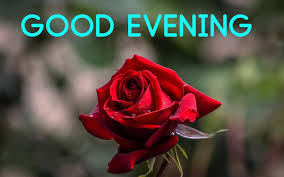 Good evening messages and images Gif ...