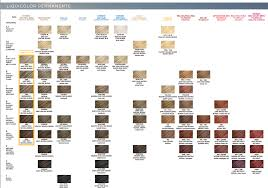 Clairol Professional Liquicolor Shade Chart In 2019 Hair