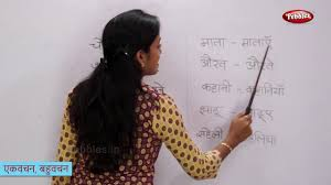 Singular And Plural Words In Hindi Change The Form Of Hindi Words