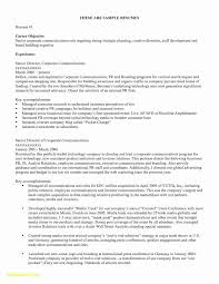 Sample Of A Resume Examples Good Resume Titles Unique Resume