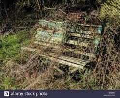 the forgotten garden bench