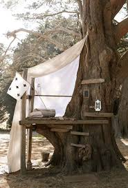 simple tree house pictures. Simple Treehouse | 15 Awesome Ideas For You And The Kids! Tree House Pictures E