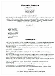 Professional Summary Resume Sample