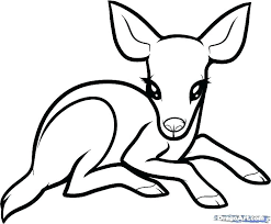 Easy Coloring Pages Animal Simple Horse Sheets Betterfor