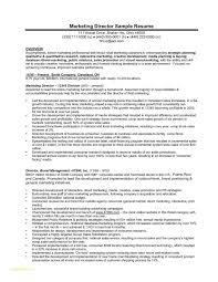 Digital Marketing Resume Template And Sample Resume For Marketing