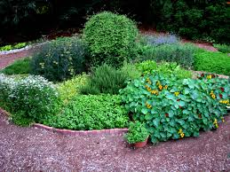 how to grow a herb garden. Workshop: Growing Culinary Herbs. Herb Circle How To Grow A Garden