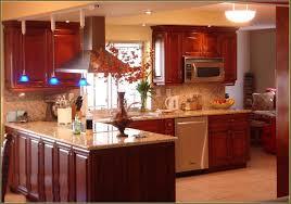 Kitchen Cabinets Miami Kitchen Cabinets Miami Florida Home Interior Ekterior Ideas