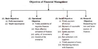 Financial Management Definition Nature And Objectives