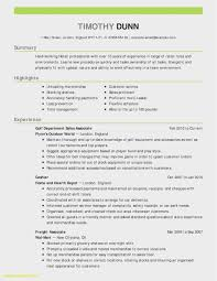 Free Free Executive Resume Template Model Free Download Template