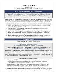 Vp It Sample Resume Executive Resume Writing Services For Cio Cto