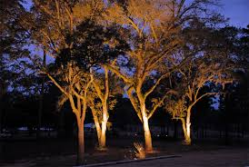 outdoor tree lighting ideas. Outdoor Light For Tree Lights Solar And Pleasing Lighting Ideas H