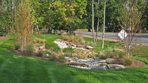 Small Picture Rain Gardens Stormwater Management and Drainage Solutions