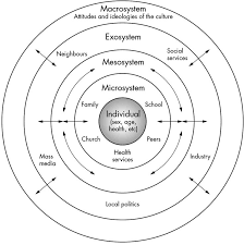 best ecological systems theory ideas urie individual to macro eco system diagram