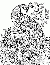 Paisley Coloring Pages Pdf At Getdrawingscom Free For Personal