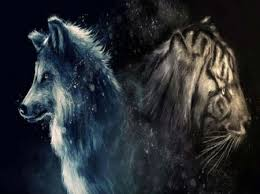 If you enjoy this game then also play games. Wolf And Tiger Desktop Nexus Wallpapers Tiger Love Wolf Artwork Animals Beautiful