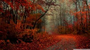 Romantic Autumn Wallpapers - Top Free ...