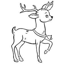 Small Picture Top 20 Free Printable Reindeer Coloring Pages Online