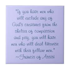 St Francis Of Assisi Quotes Gorgeous St Francis Of Assisi Quotes About Animals St Francis Animals