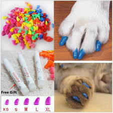 Cat Nail Cap Size Chart 20pcs Cat Kitten Nail Caps Soft Gel Pet Paws Claw Covers Clear Glue S8ycba9 Buy At A Low Prices On Joom E Commerce Platform