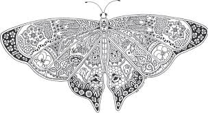 Best Adult Coloring Pages Printable Butterfly 3146 Adult Coloring