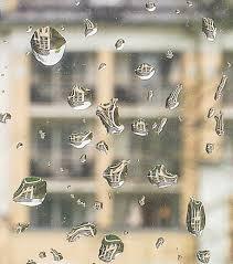Regentropfen Objektive Kleine Entdeckungen Vergrössern Fokussiertcom