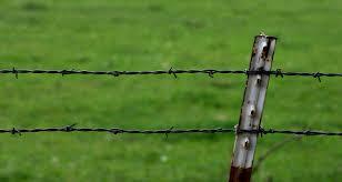 farm fence drawing. Barbed Wire Fence By JaedenDak Farm Drawing .