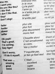 funny french phrases google search dictionary french phrases  french phrases