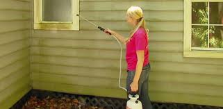 spraying wet forget mold and mildew remover on a house