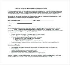 How To Make Your Birth Plan Low Intervention Birth Plan Template Cesarean C Section