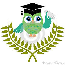 Resultado de imagen para buhos para colorear de graduacion