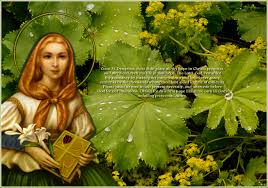 Image result for saint dymphna