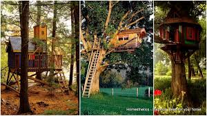 Image Backyard The Family Handyman 37 Diy Tree House Plans That Dreamers Can Actually Build