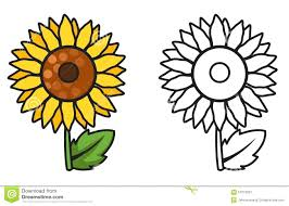 Sunflower Coloring Pages For Preschoolers Colorful Black White ...