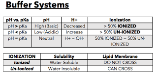 Pka Acidity Chart Everything You Need To Know About Ph Pka Minimalist