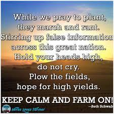 Ffa Quotes Impressive 48 Farm Quotes On Pinterest Agriculture Quotes Ffa Farmer Quotes