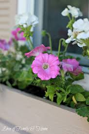Diy Window Boxes Easy Inexpensive Diy Window Boxes Love Of Family Home