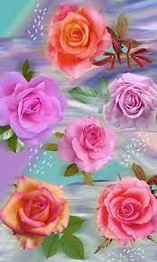 Love Rose Flower Wallpaper 3d ...
