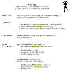 Resume For No Work Experience High School Resume Template No Work