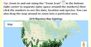 2017 Hummingbird Migration Chart Spring 2019 Hummingbird Migration