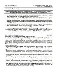 Litigation Attorney Resume Examples Basic Resume Examples