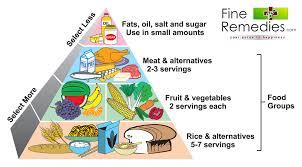 Free Balanced Diet Chart Download Free Clip Art Free Clip