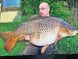 Angler zogen den fisch aus einem göttinger kiessee, in seinem maul steckte eine schildkröte. E1demit2ngceom