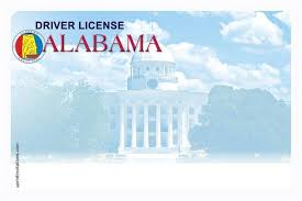 License Drivers Drivers License