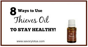 Thieves Oil Dilution 8 Ways To Use Thieves Oil To Stay Healthy Savory Lotus