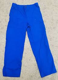 Carhartt C54108 Mens Ripstop Multi Cargo Pant All Sizes All
