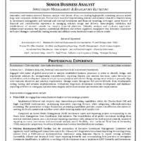 ... Regulatory Reporting Senior Business Analyst Resume. Other Size [ small  ] [ medium ] ...